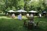 Cocktail in the CVNE garden